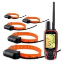Garmin Astro 320 GPS Tracking Collar w/ DC-50 5 Dog Combo объявление
